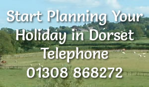 holiday-in-dorset